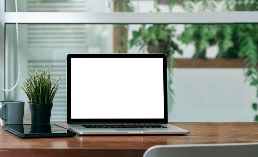 bureau et plantes vertes